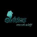 Evides - VX Company