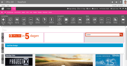 vijf-tips-voor-sharepoint-branding-edit-template-blog-rene